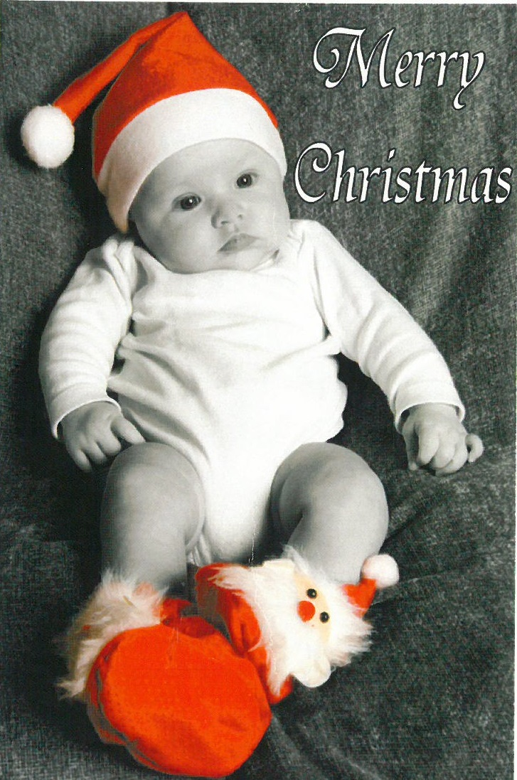 Bella Christmas Card 2011